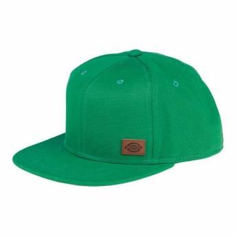 DICKIES GREEN HAT MINNESOTA