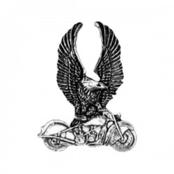 PIN EAGLE ON BIKE